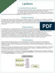 Resumo Bioquímica Lipídeos