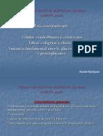 Tejido Conectivo Especializado Cartilago (3)
