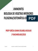 Grandes Linhagens Eucariotas 2010 (Sistemática Algal 2010)