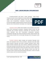 Lingkungan Organisasi
