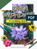 Bunga liar Florida