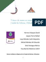 El Cancer de Mama en Mujeres de La Ciudad de Delicias (Mejorada)