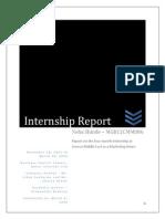 internship report neha shinde