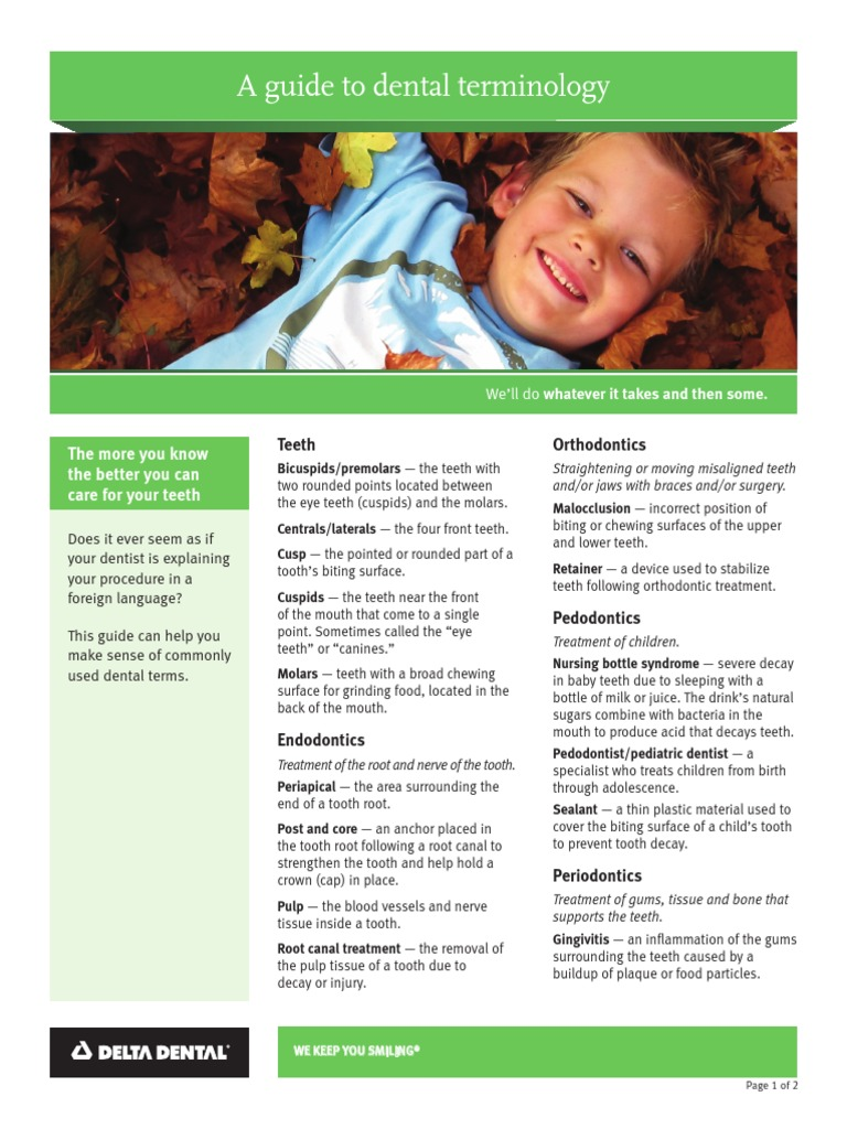 Dental Terms 8x11 | Human Tooth | Dentures