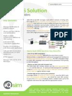 Bulk SMS Solutions DS12 En