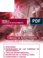 TEMA 1-1.pptx