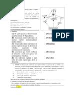 Exercicios ECOLOGIA ECOLOGIA
