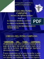 Tunel Carpiano Rdguez 1