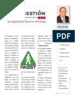 Capacitación y Asesoría PASST (JLMatus)