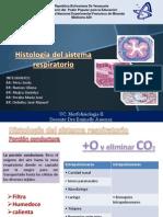 4 Histologia Del SR