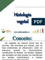 Botânica Histologia Vegetal