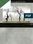 173729218 Psicodinamica Ppt (1)