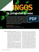 Artigo- Sexo Dos Fungos