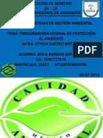 AVILA.BARRIOS .GERARDO.TRABAJOFINAL.PROFEPA.06-07-2014.pptx
