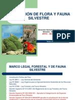 Protección de FyF Silvestre