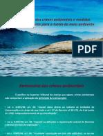 Autonomia Dos Crimes Ambientais e Medidas Despenalizadoras Para a Tutela Do Meio Ambiente