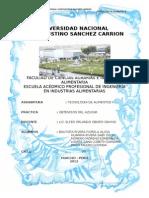 Informe de Elaboracion de Caña de Azucar