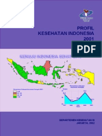 Profil Kesehatan Indonesia-2001