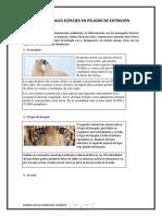 Las especies en peligro de extinciónKL.docx