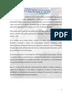 TEST DE LA FIGURA HUMANA DE KAREN MACHOVER- Exposicion.docx