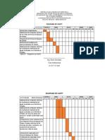 Diagrama de Gantt Del plan de actividades, UNEFA