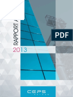 CEPS Rapport Annuel 2013