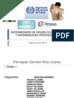 Enfermedades de Origen Ocupacional y Enfermedades Profesionales