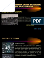 Exp. Monografia Guayacundos