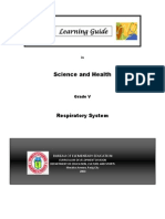 Respiratory System Learning Guide