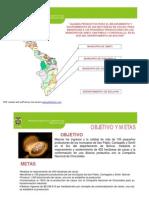 Presentacion Cin Cacao Asocazul