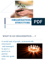 Org Stucture