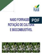 nabo_rot_cultura_biocombustível.pdf
