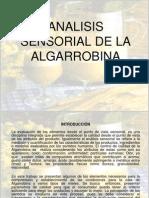 DIAPOSITIVAS ALGARROBINA