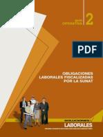 015 Obligaciones Laborales Fiscalizadas Por La Sunat