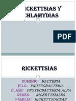 Rickettsia Clamydea