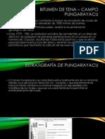 Bitumen de Tena – Campo Pungarayacu Rocafuerte