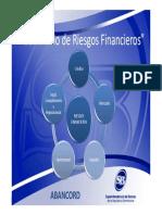 Seminario Riesgo de Credito y Concentracion (SB ABANCORD)