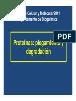 9 Proteinas Plegamiento y Degradacion