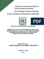 Desarrollo de Las Actividades Del Cultivo de Brócoli (Brassica Olereceae), Con 5 Dosis de Abono Orgánico (Gallinaza) en Las Condiciones Climáticas El Distrito de Lamas.