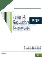 Tema 14a Reguladores Del Crecimiento. Auxinas
