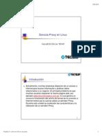 11 Linux Servicio Proxy.pdf