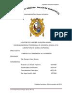 Inorganica Informe