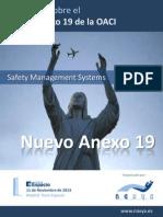 Seminario Anexo 19 Programa