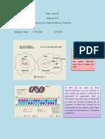 madelaine v- codigo genetico