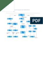 mapa conceptual del metabolismo