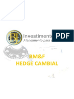 hedge cambial.pdf