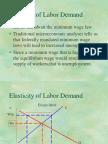 The Elasticity of Labor Demand
