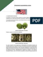 Plan de Exportacion de Alcachofas a Eeuu