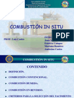 Combustion in Situ