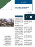 bib755_la_biomasa_como_fuente_de_energia_renovable